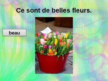 Beau, nouveau, vieux French adjectives power point