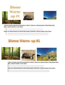 biome warm-ups