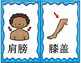 Mandarin Chinese body parts flashcards classroom use size 1 (身体部位词卡1)