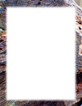 border-log grain