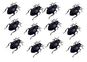 bug token board