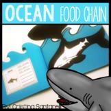 ocean food chain