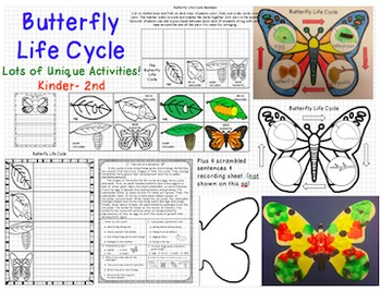 A Butterfly Grows Journeys First Grade Unit 5 Lesson 24 Life Cycle Fun!