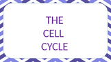 cell division PPT