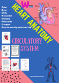 circulatory system label