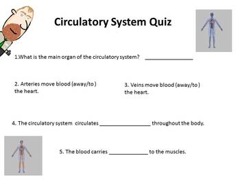 circulatory system quiz for brain blast video