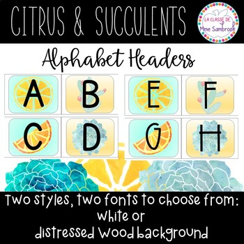 citrus and succulents bulletin board alphabet I alphabet for word wall