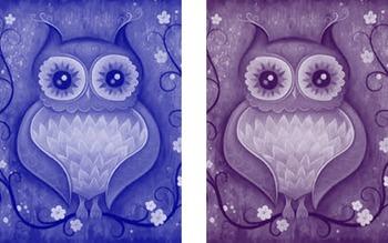 classroom elegant owls color cards