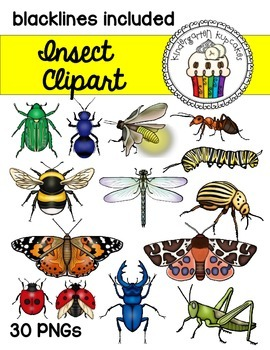 clipart: insects