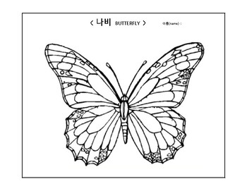 coloring and writing butterfly(Korean activities-나비)