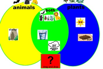 compare and contrast plants and animlas interactive ActiveInspire