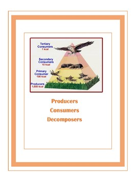 consumers, producers, decomposers