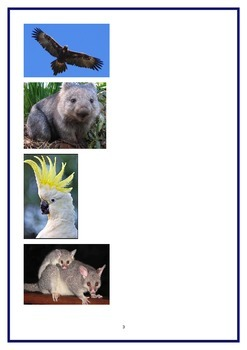 counting legs australian animals special ed, maths classifying sorting