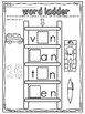 cvc word family ladders