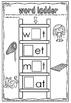 cvc word family ladder 3