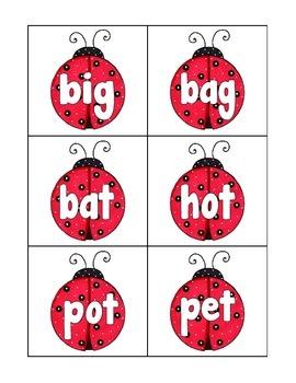 cvc word sort: ladybug theme