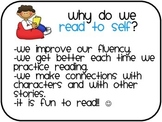 Mini Anchor Charts for Literacy Purposeful Practice
