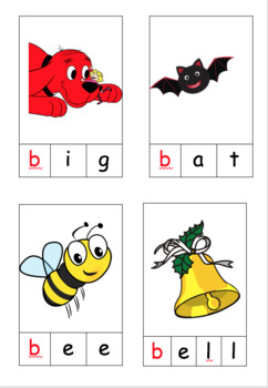 dictionary-pictionary and picture cards