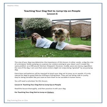 Dog Training One On One