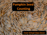 eBooks - 2 Pumpkin Seed Counting Books