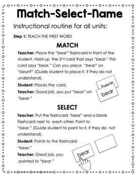 Dolch Nouns V2-READING INTERVENTION (Down Syndrome, autism & more)