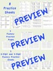 enVision Math 2.0 Topic 13 Grade 2 Practice Sheet