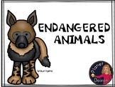 endangered animals vocabulary, reading comprehension and f