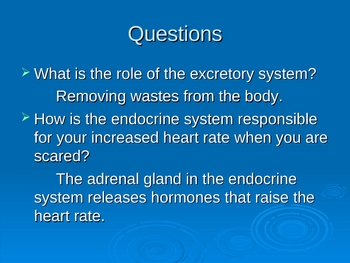 endocrine and excretory system