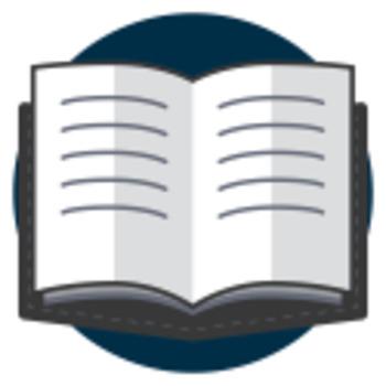 cheap essay reviser