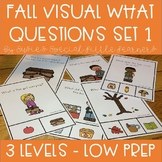 FALL VISUAL WHAT QUESTIONS FOR AUTISM AND SPECIAL EDUCATION