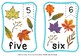 fall sequence and graphing