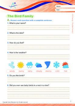 Family - The Bird Family - Grade 1 (with 'Triple-Track Writing Lines')
