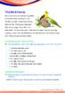 Family - The Bird Family - Grade 1 (with 'Triple-Track Wri