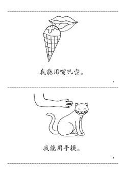 five sense minibook- chinese