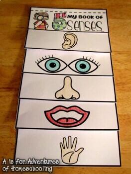 five senses flip book