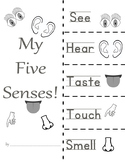 five senses foldable