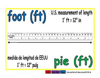 foot/pie meas 1-way blue/verde