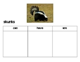 forest animal can have are chart