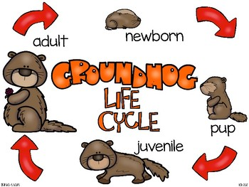 groundhog day mini-bundle
