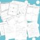 The Tale of Despereaux 3rd Grade Common Core Novel Study