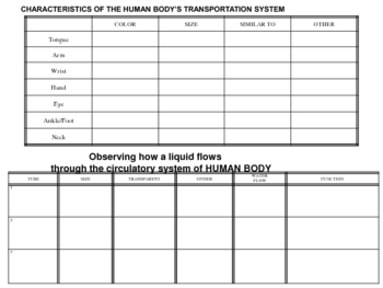 human body systems theme packet