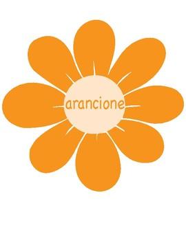 i colori ~ Colors in Italian ~  Classroom Display ~ Flowers