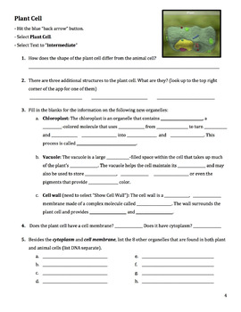 iCell App Worksheet- Intermediate Text