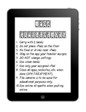 iPad Expectations Poster