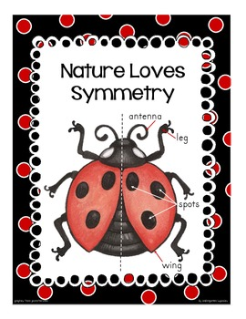 ladybug: an introduction to symmetry