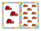 ladybugs: quantity representation
