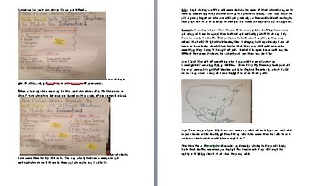 Grade 3 Lesson Plan Session  3/ The Art of Informational Writing