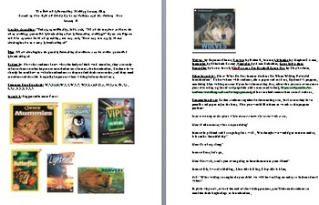 Grade 3 Lesson Plan for Session 11/ The Art of Information