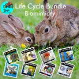 Life Cycle 2 Whole Year Bundle   Project Based Learning ST
