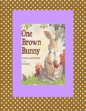 One Brown Bunny - Spring Reader's Theater